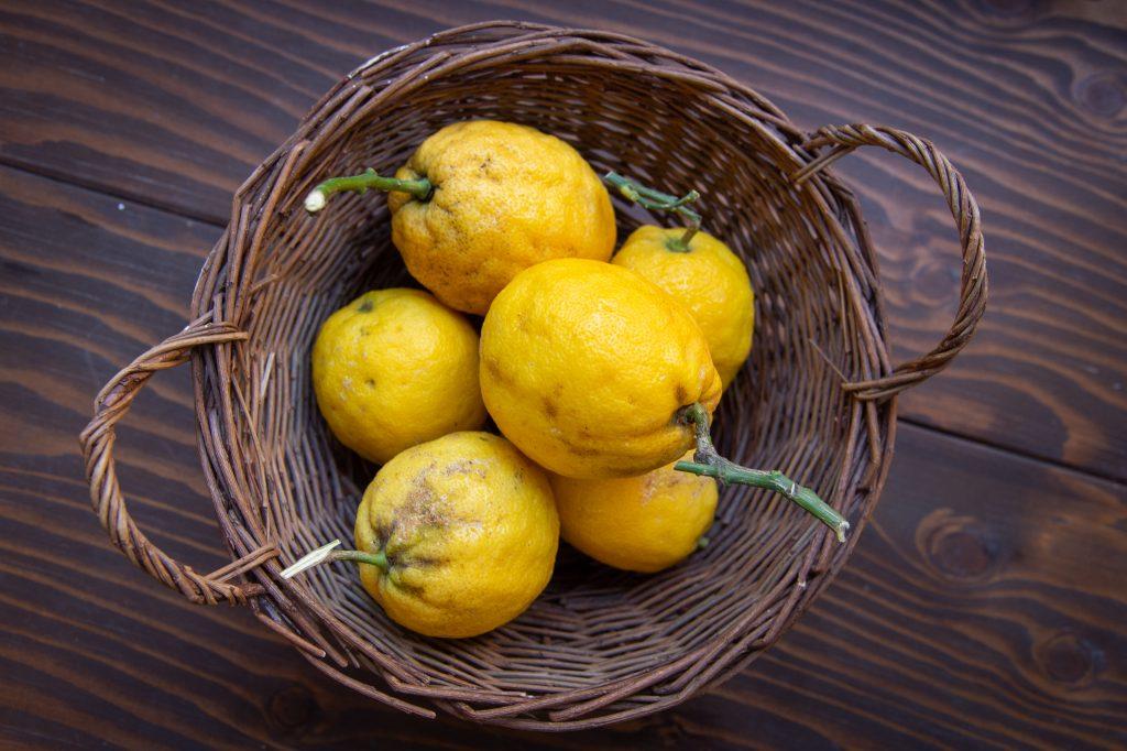 Le Magazine Fines Bouches à propos du Citron de Menton